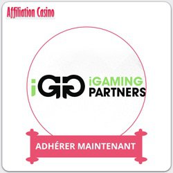 details igaming partners